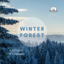 Winter Forest Sounds